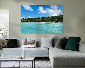 Azuurblauwe zee en wuivende palmbomen op de Dominicaanse Republiek van Reis Genie