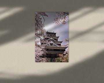 Kasteel van Hiroshima tijdens kersenbloesem seizoen van Mickéle Godderis