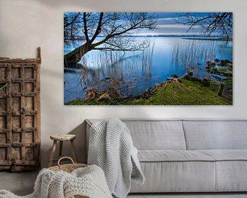 Biesbosch Panorama van Frank Peters