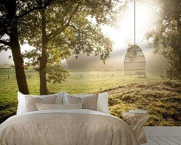 Koeien in schitterend ochtendlicht van Thomas Boelaars