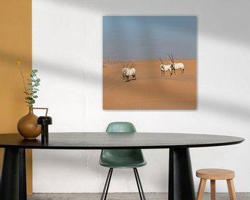Oryxen in de woestijn van Ruth de Ruwe