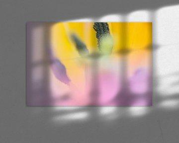 Tulpenrosa mit Gelb, abstrakt von de buurtfotograaf Leontien