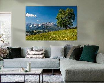 Kitzbüheler Alpen, Österreich