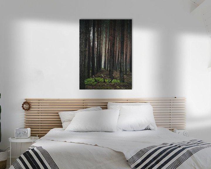 Beispiel: Der Schatz im Wald von Jakub Wencek