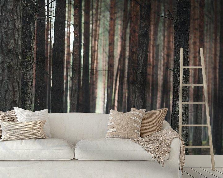 Beispiel fototapete: Der Schatz im Wald von Jakub Wencek