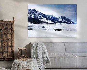Winterlandschaft am Traunsee in Österreich