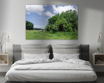 Bäume und eine Kuh auf einem Feld von Mickéle Godderis