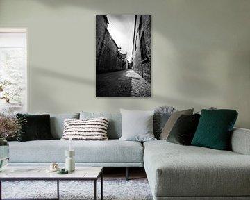 Allee in Brügge in schwarz-weiß von Mickéle Godderis