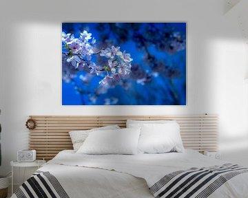 Blühende Kunst von Ineke Huizing