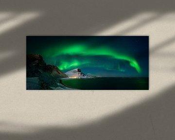 Nordlandsnupen Aurora von Wojciech Kruczynski