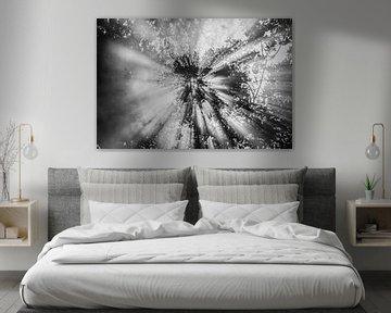 Himmlisch! schwarz-weiß 1 von de buurtfotograaf Leontien