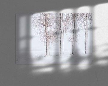 Hollands Landschap Winter van Frank Peters