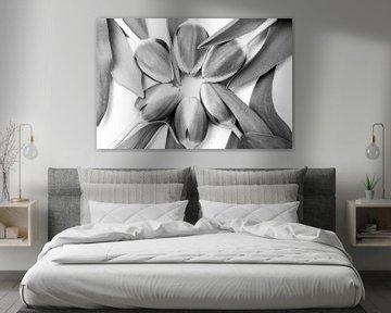 Tulpen in einem Kreis von Ratna Bosch