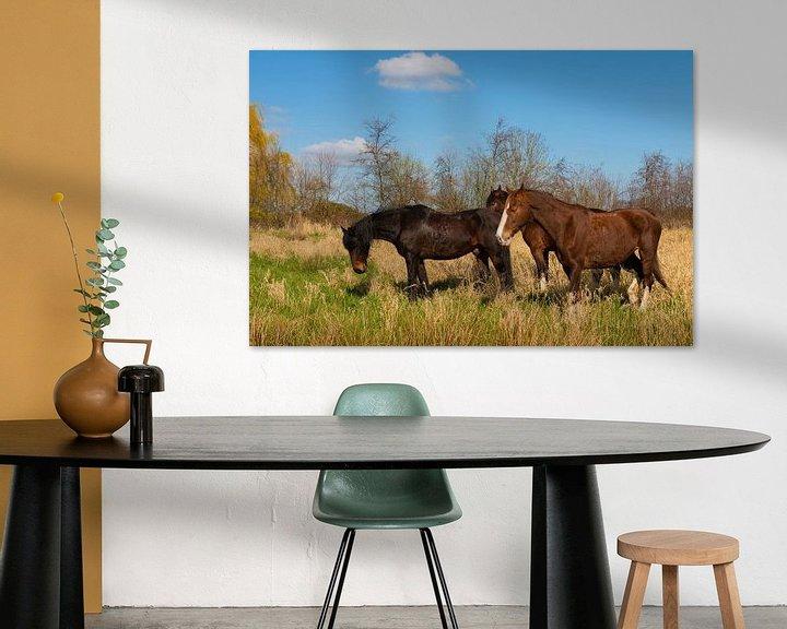 Sfeerimpressie: Paarden in het Weiland van Brian Morgan