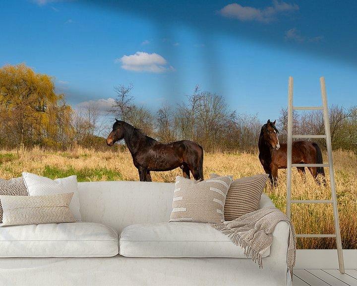 Beispiel fototapete: Pferde in der Sonne von Brian Morgan