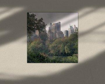 Central Park skyline von Maaike van Stratum