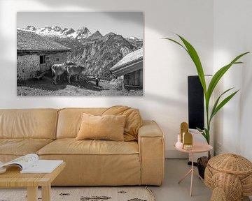 Schwarz-Weiß von einem typisch österreichischen Bild von Reis Genie
