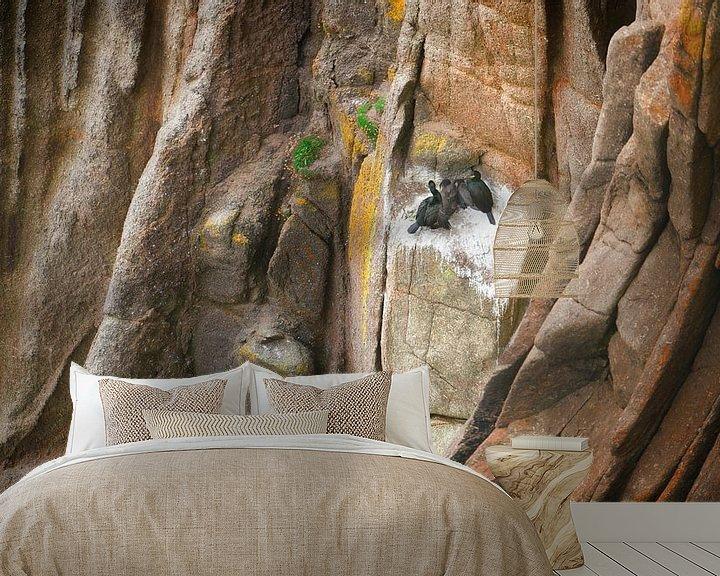 Sfeerimpressie behang: 1385 Cormorants on the Rock van Adrien Hendrickx