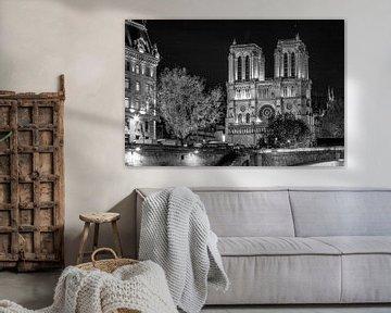 Zwart-Wit: Notre Dame in Parijs - laat in de avond van Rene Siebring