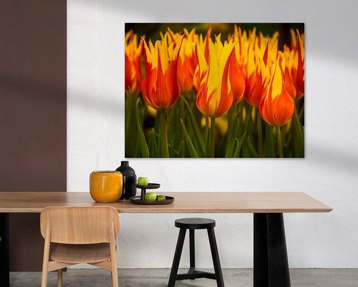 Beispiel: Feurige Tulpen von Martijn Tilroe