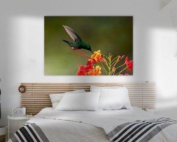 Groene Kolibri van Henk Zielstra