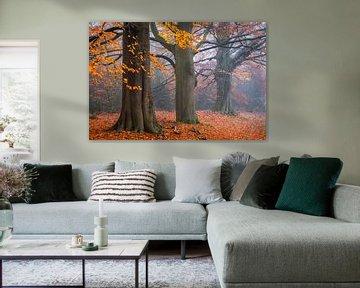 Oranje Ornamenten van Tvurk Photography