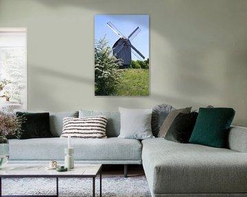 Windmolen van Karina Baumgart
