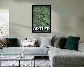 Ortler | Landkarte Topografie (Grunge) von ViaMapia