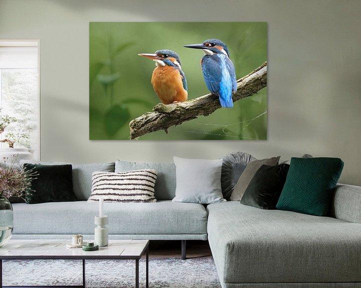 Beispiel: Eisvogel von Heiko Lehmann