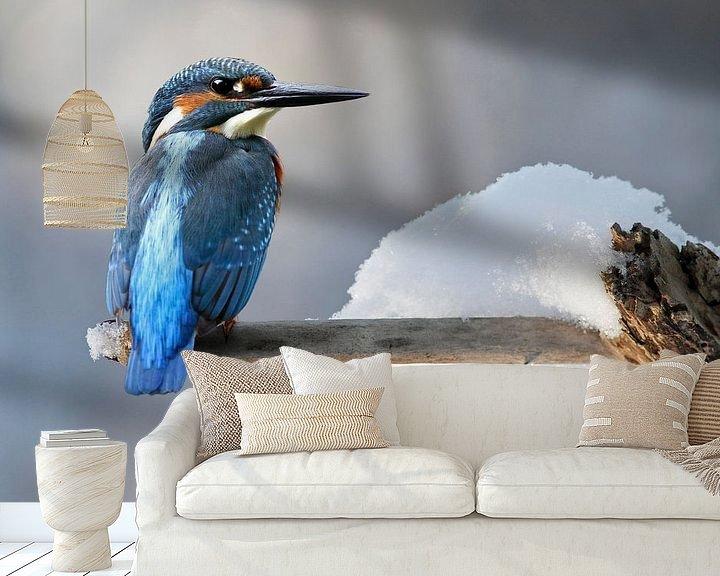Beispiel fototapete: Eisvogel von Heiko Lehmann