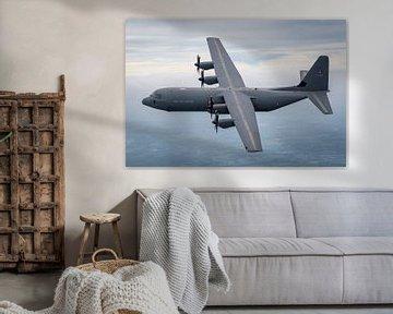 C-130. Air to air shoot above Belgium. Danish Air Force. van Patrick Vercauteren