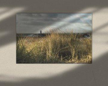 Nördlicher Hafenkopf Scheveningen von Anne Zwagers