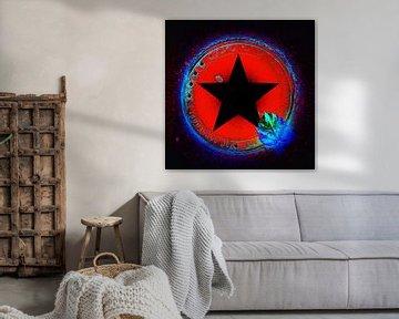 Schwarzer Stern von Leanne Buskermolen
