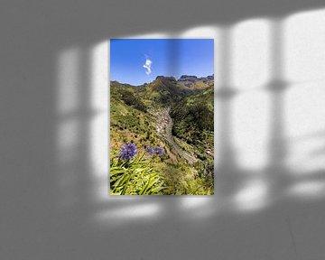 Tal bei Serra de Água auf Madeira von Werner Dieterich