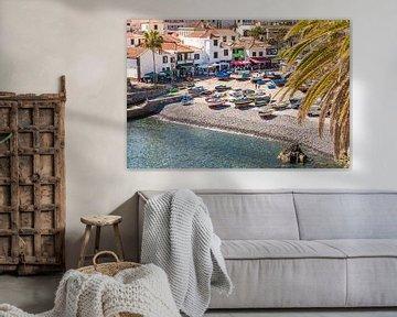 Vissersvaartuigen in Câmara de Lobos op het eiland Madeira van Werner Dieterich