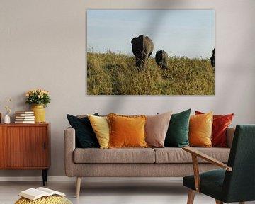 Elefanten, die weggehen von Laurence Van Hoeck