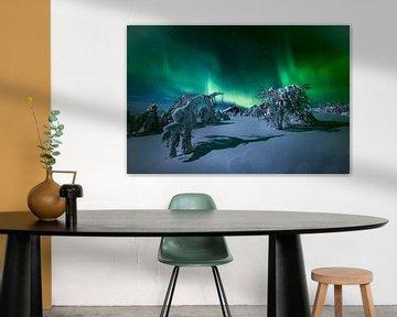 Het licht van Lapland.