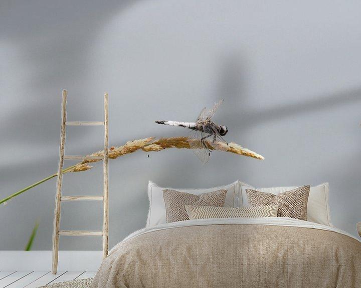 Sfeerimpressie behang: Libelle op graanhalm van Bram de Muijnck