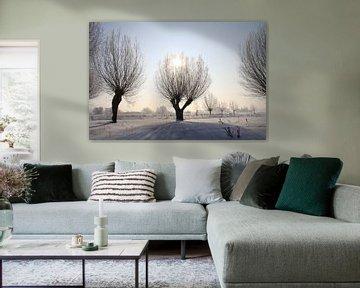 knotwilgen in winterjurk van Karina Baumgart