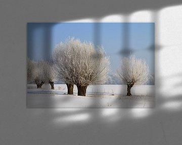 Winterlandschap met knotwilgen van Karina Baumgart
