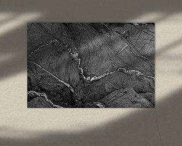 Abstrakt in Schwarz-Weiß von Anneke Hooijer