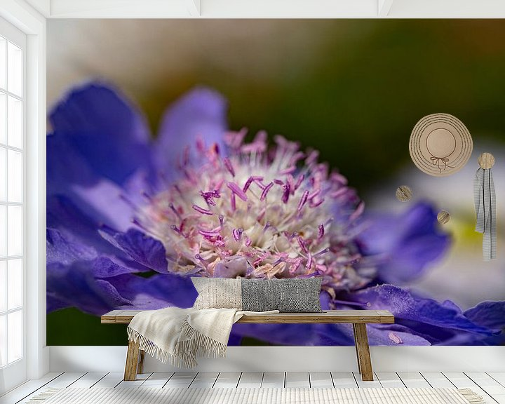 Sfeerimpressie behang: Bloeiende bloem. van Anneke Hooijer