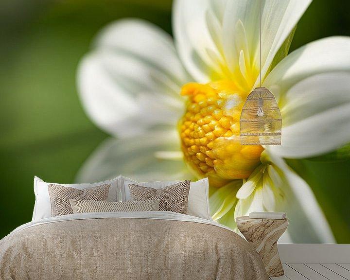Impression: Fleur blanche jaune sur Anneke Hooijer