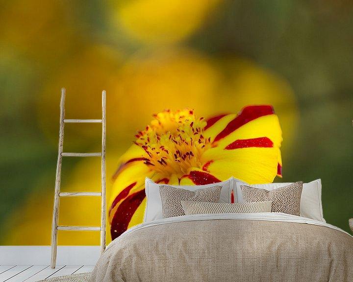 Sfeerimpressie behang: Rood gele bloem van Anneke Hooijer