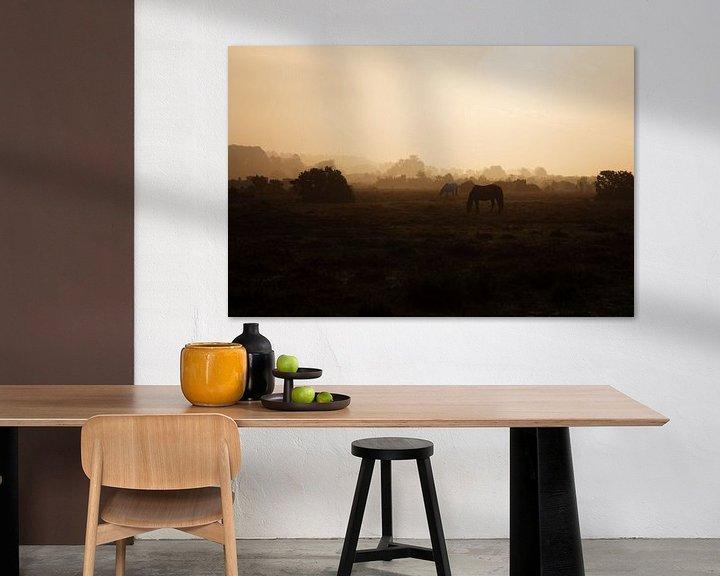Sfeerimpressie: Paardjes in het gouden licht. van Anneke Hooijer
