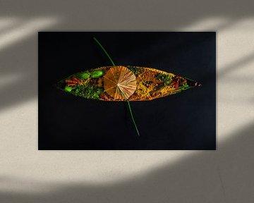 Orientalisches Boot voller Kräuter und Gewürze von Corrine Ponsen