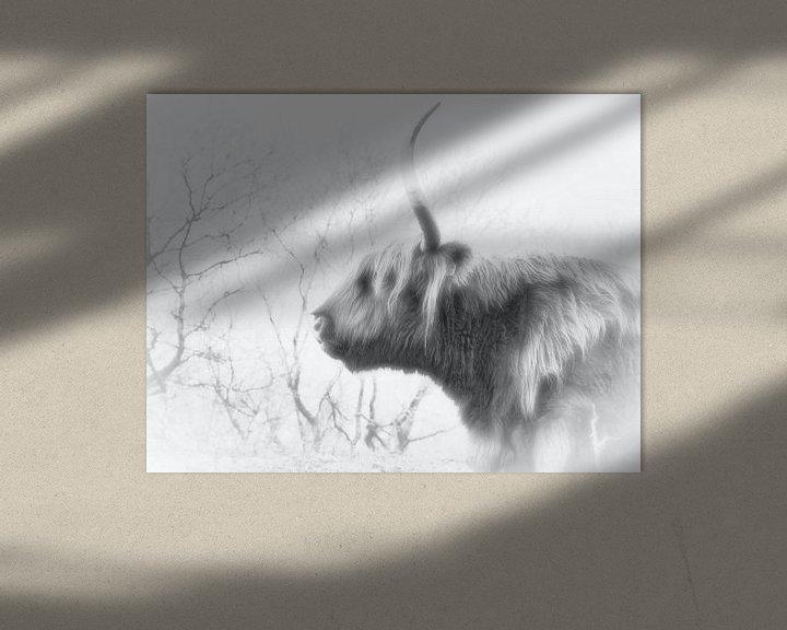 Beispiel: Ein schottischer Highlander, schwarz-weiß von Wendy Tellier - Vastenhouw