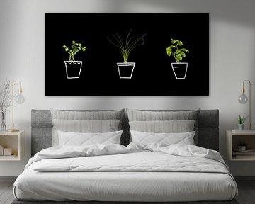 Kruiden in pot, herbs in pot. van Corrine Ponsen