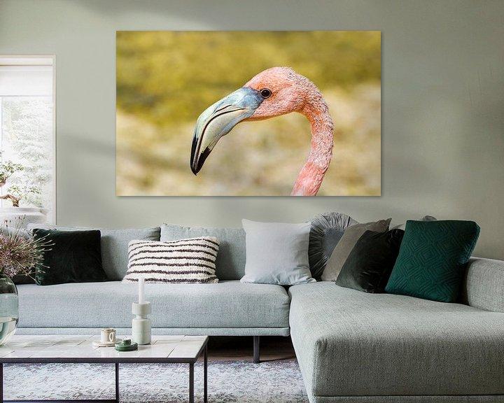Beispiel: Nahaufnahme des Kopfes eines roten karibischen Flamingos von Ben Schonewille