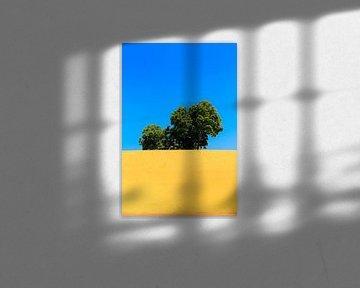 Rijzende boom van Juul van Wandelen